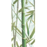 Bamboo 1 Decor 24,9x50