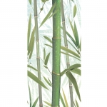 Bamboo 2 Decor 24,9x50