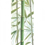Bamboo 3 Decor 24,9x50
